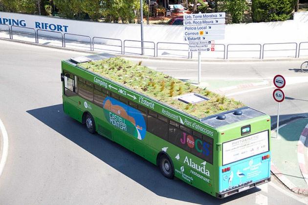 """""""Bus con Giadino sul tetto"""""""