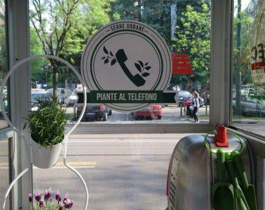 recupero-cabine-telefoniche-progetto-piante-al-telefono-1