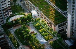 Brand Urbanism_ post_Blog2
