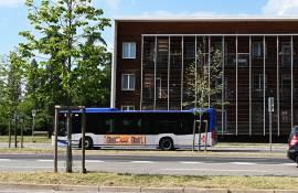 Pubblicità su autobus IGPDecaux Firenze Side Banner per Sammontana